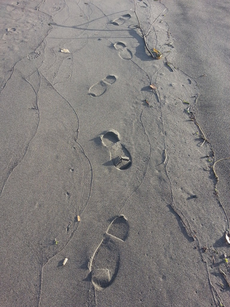 a walk on the beach - Nov 2014